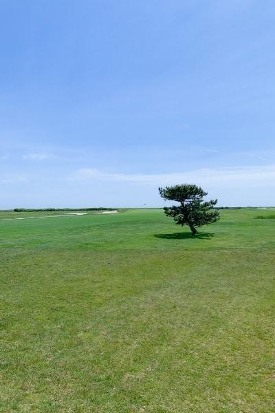 Ocean Course Links Golf at Club of New Seabury